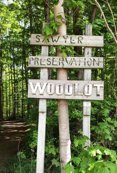 Sawyer Preservation Woodlot